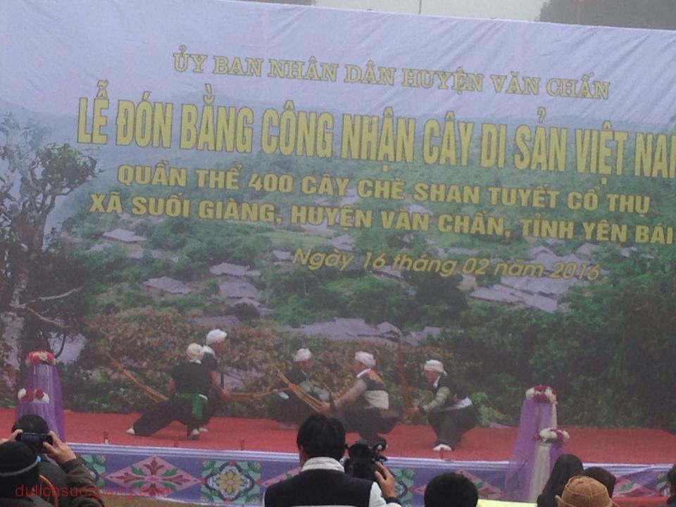 che-suoi-giang-duoc-cong-nhan-la-cay-di-san-1