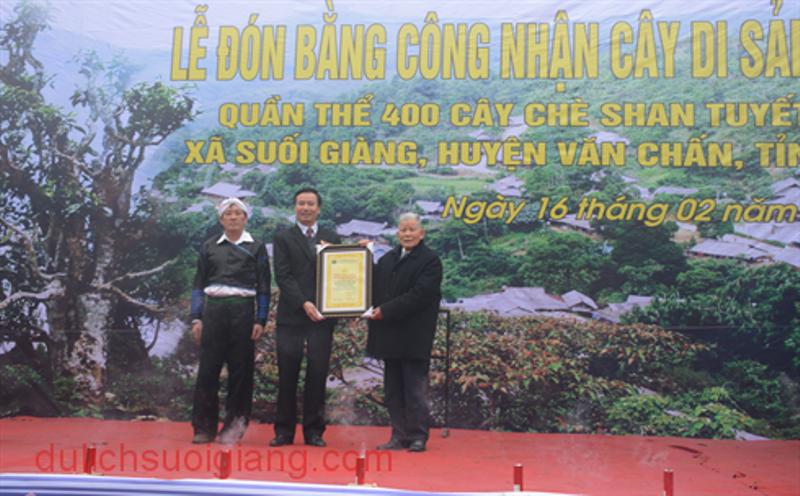 che-suoi-giang-duoc-cong-nhan-la-cay-di-san-4