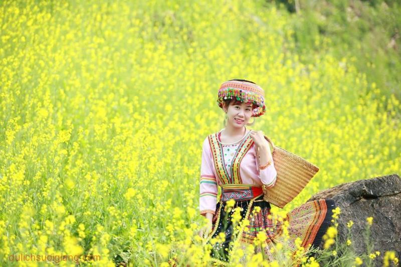 ruc-vang-canh-dong-hoa-cai-tai-suoi-giang-yen-bai-24