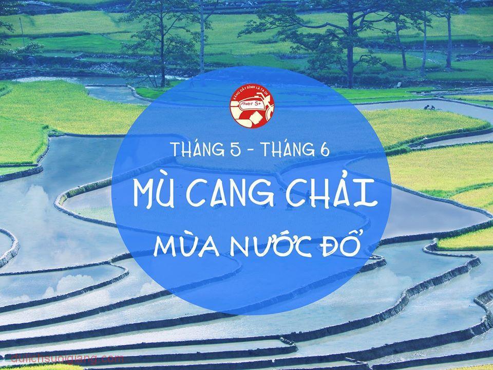 mu-cang-chai-mua-nuoc-do-2016