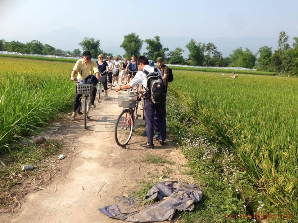 mu-cang-chai-phan-dau-den-2020-don-60-ngan-luot-khach2