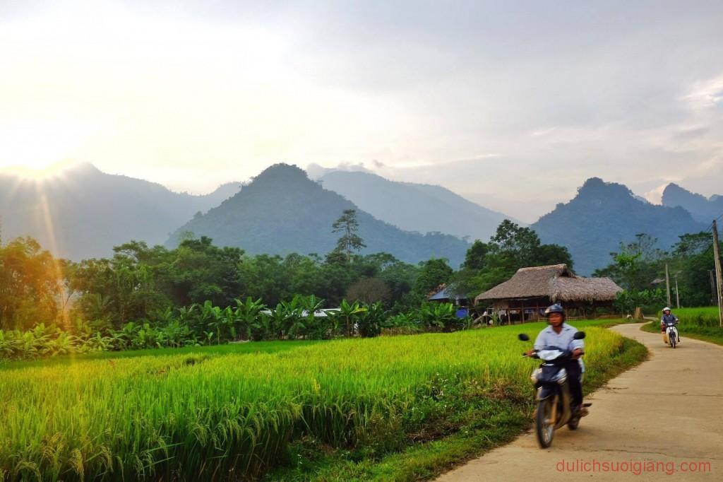 kham-pha-xoi-farmstay-luc-yen-yen-bai (1)