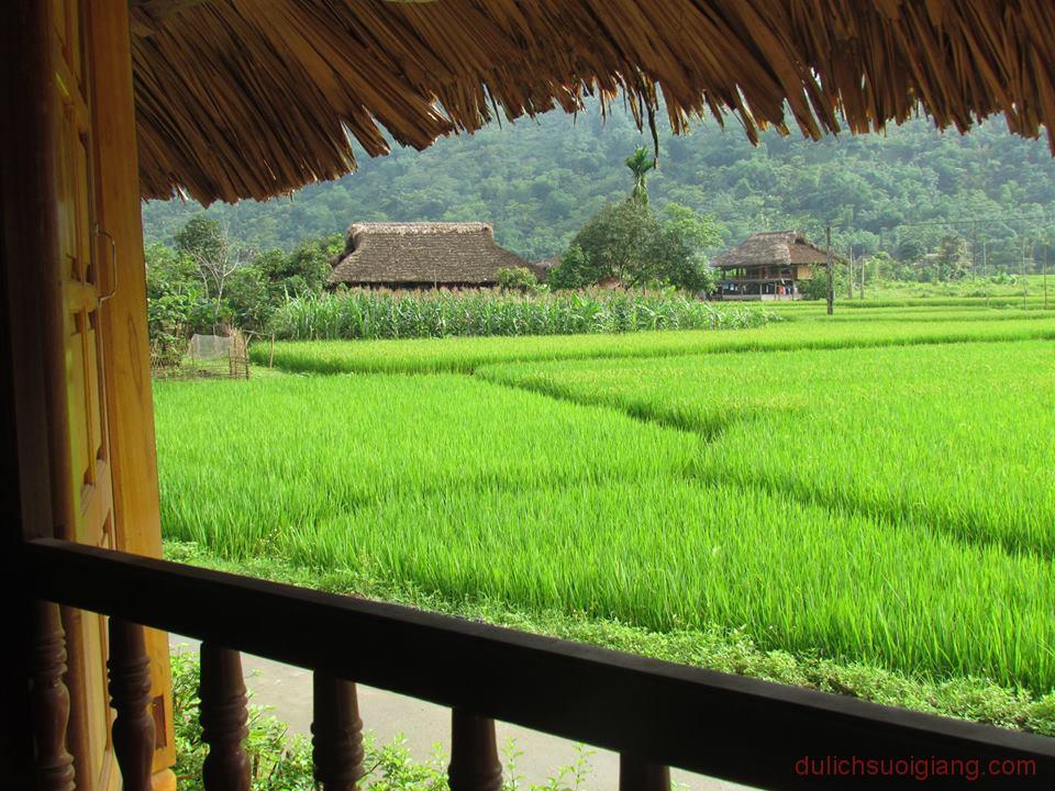 kham-pha-xoi-farmstay-luc-yen-yen-bai (27)