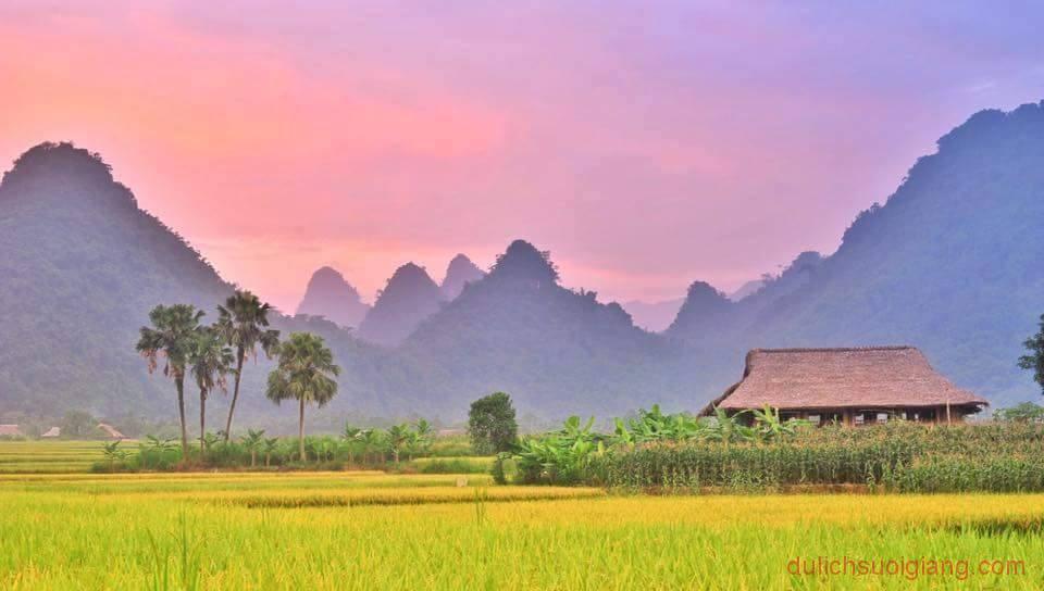 kham-pha-xoi-farmstay-luc-yen-yen-bai (3)