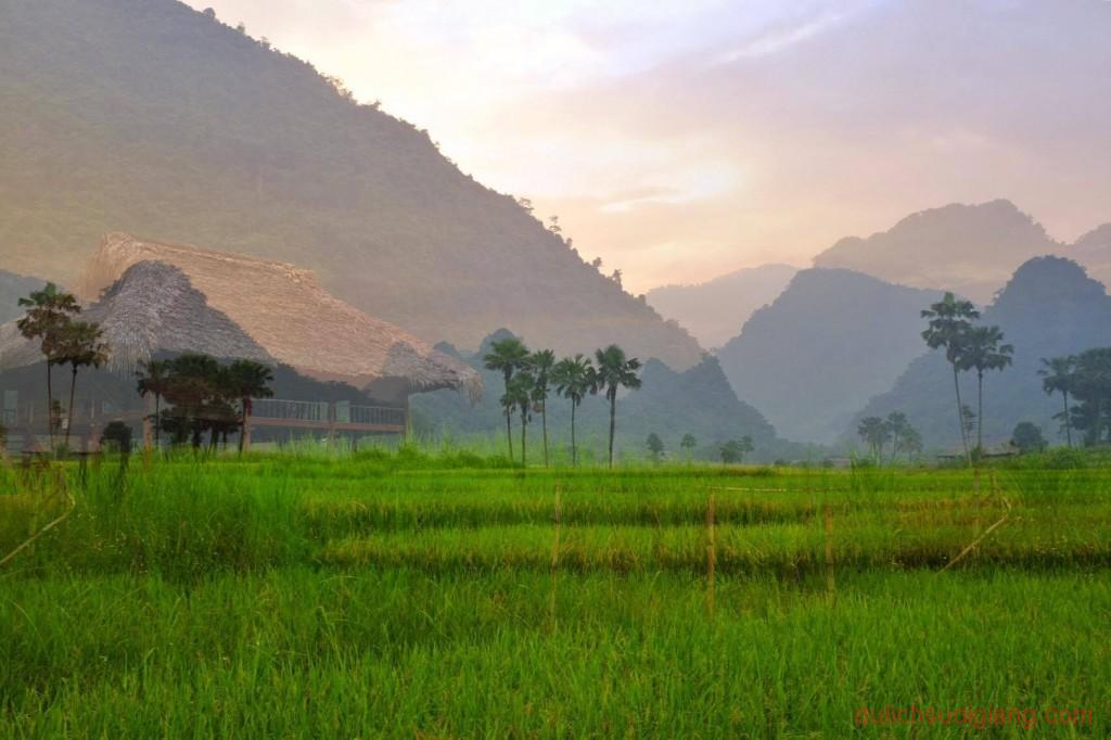 kham-pha-xoi-farmstay-luc-yen-yen-bai (4)