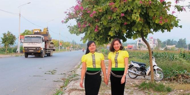Ngắm Hoa Ban Đỏ nở rộ tại Thị xã Miền Tây Yên Bái