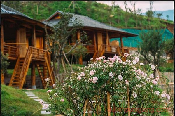 booking-lecham-resort-tu-le-yen-bai (30)