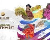 Le Champ Tú Lệ Resort: Viên ngọc sáng miền tây Yên Bái