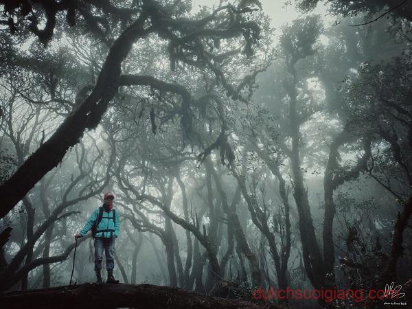 trekking-ta-xua-tram-tau-yen-bai (24)