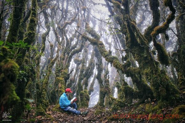 trekking-ta-xua-tram-tau-yen-bai (7)