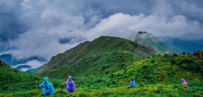 Trekking đỉnh Lùng Cùng và thăm lúa Mù cang chải
