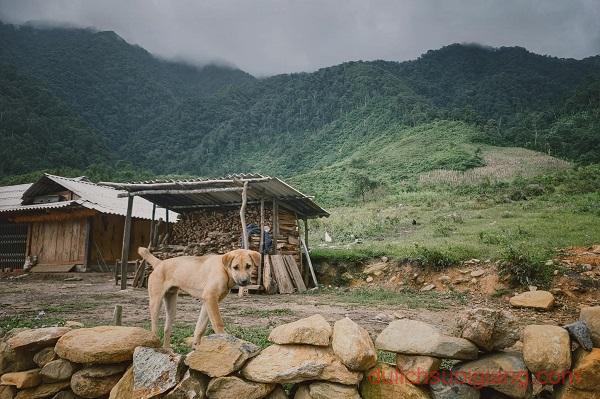 trekking-lung-cung-mucangchai-va-ngam-lua (10)