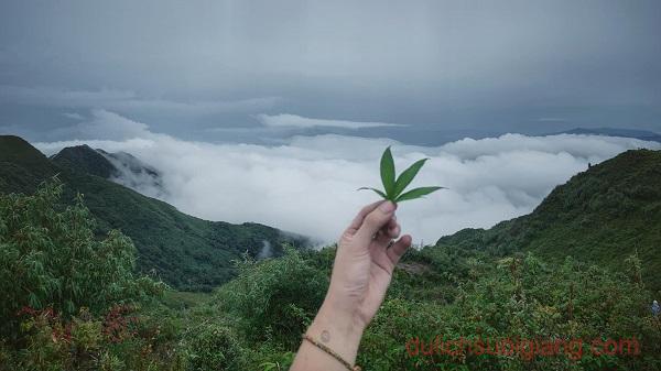 trekking-lung-cung-mucangchai-va-ngam-lua (22)