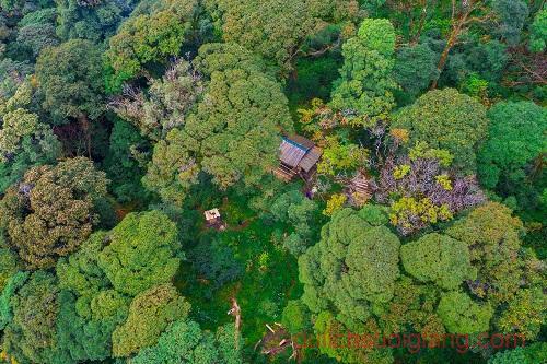 trekking-lung-cung-mucangchai-va-ngam-lua (31)